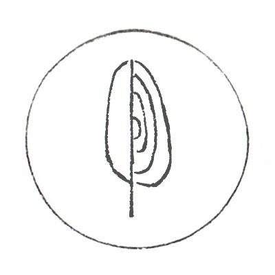 web-service-logos-5